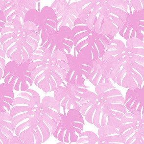 palm  monstera pastel pink tropical leaves summer botanicals