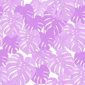 palm  monstera pastel purple tropical leaves summer botanicals