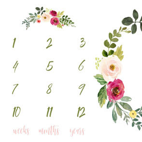 Deer and Pink Meadow Florals Baby Milestone