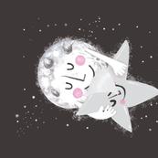 moon-star-pillows-01