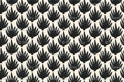 Boho Palm