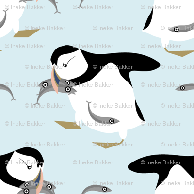 Puffins with fishes
