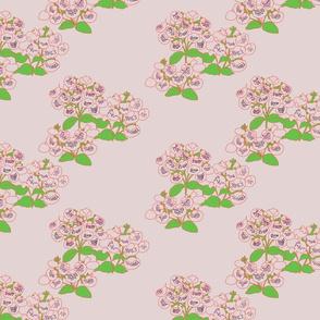 dotty plant