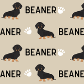 doxie beaner custom write to me to customize before purchase