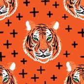 Rkeegan_tiger_smaller-01_shop_thumb
