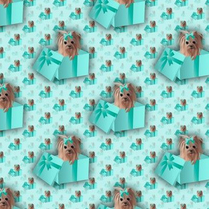 Yorkie - Tiffany Matching fabric