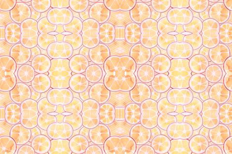 Tangerine Ring Kaleidoscope fabric by wingswormsandwonder on Spoonflower - custom fabric