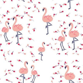 Flamingo dance romance