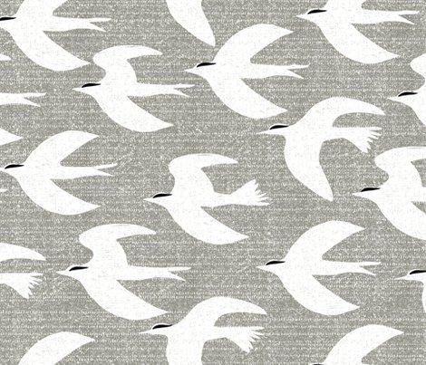 Birds4-1_shop_preview