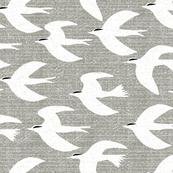 Rrrbirds3-1_shop_thumb