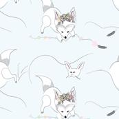 Arctic Animals, Baby white Fox, Snow Animals