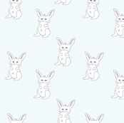 White Baby Bunny Rabbit