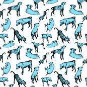 Scritch Scratch Pups