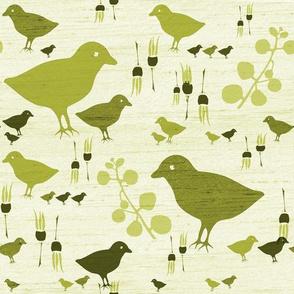 mustard birds