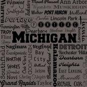Rmichigan_cities__gray_shop_thumb