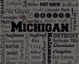 Rmichigan_cities__gray_thumb