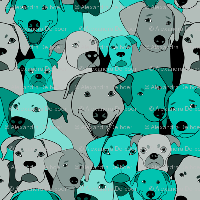 Dogs are compassionate teal