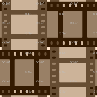 07058546 : film cell weave : sepia