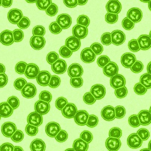 07058636 : streptococcus : slime green