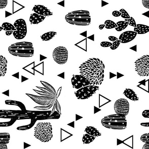cactus (RR) // black and white geo triangle tropical trend