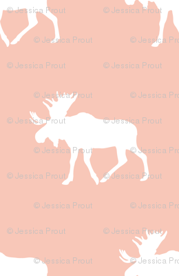 (jumbo scale) moose on light coral