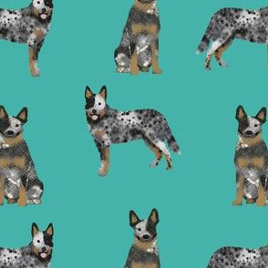 australian cattle dog blue coat fabric for cattle dog lover turquoise