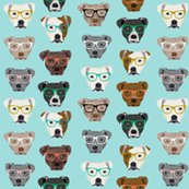 Rpitbull-heads-glasses_shop_thumb