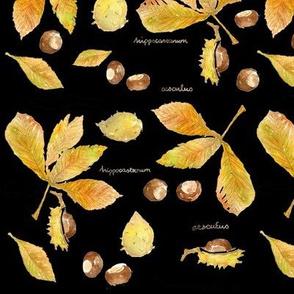 Anna's Chestnuts