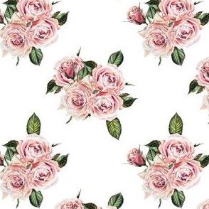 """4"""" Wild Child Roses"""