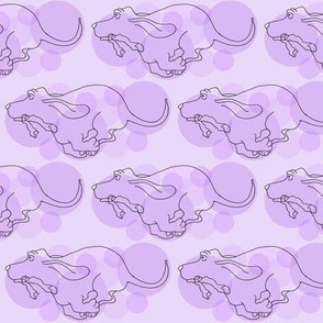 Basset Hound in Purple