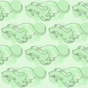 Basset Hound  in Green