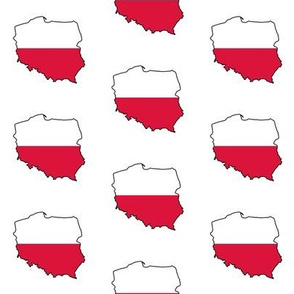 Polish Flag Overlay