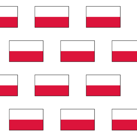 Polish Flag fabric by thinlinetextiles on Spoonflower - custom fabric