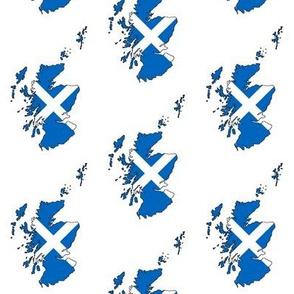 Scottish Flag Overlay