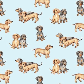 Lots of Little Dachshunds - blue