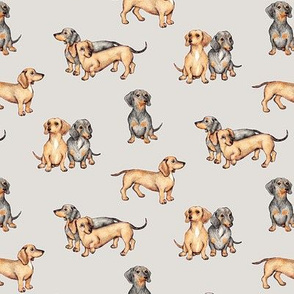 Lots of Little Dachshunds - grey