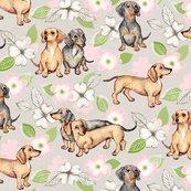 Rrdachshund-and-dogwood-base-pink-small_shop_thumb