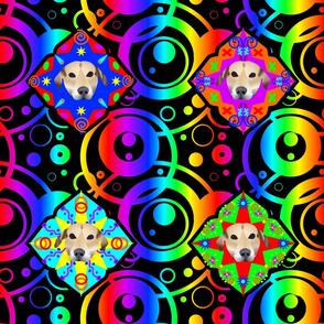 Rrainbow-beagle-150dpi_shop_thumb