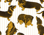 Rspoonflower-dachs_thumb