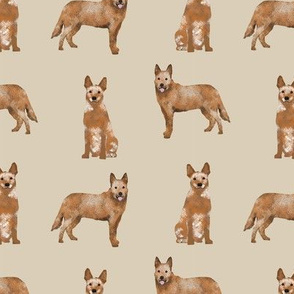 australian cattle dog red heeler simple dog breed fabric beige