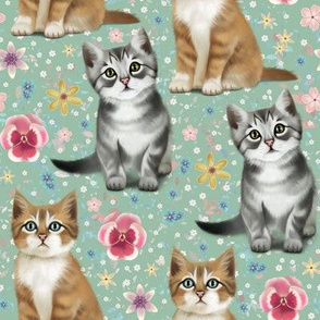 Kittens in spring