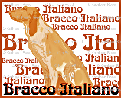 Rbracco-italiano_preview
