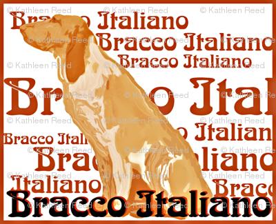 Rbracco-italiano_preview