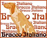 Rbracco-italiano_thumb
