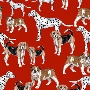 Dogs Pals on Red