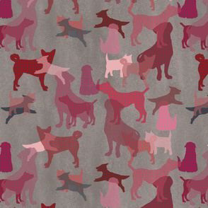 A polka pink dog year