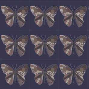 bright navy butterfly repeat