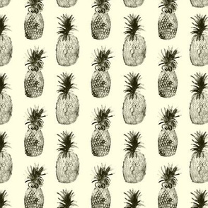Retro pineapples
