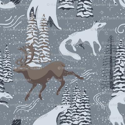 Arctic Winter Wanderers