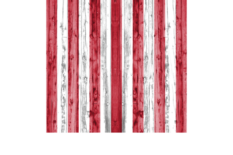 2 yard minky panel - American Flag  fabric by littlearrowdesign on Spoonflower - custom fabric